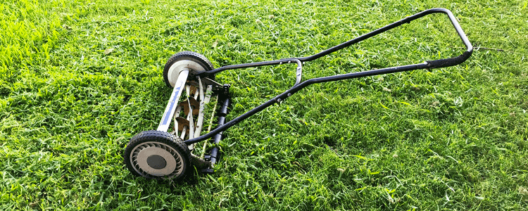 Best Pull Reel Mower